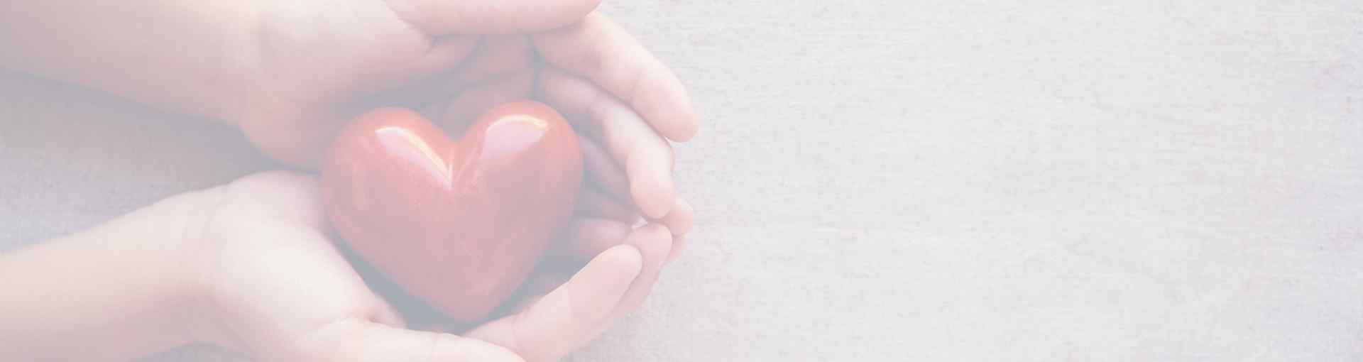 a healthy heart in hands