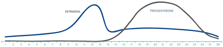 graph for estradiol and progesterone